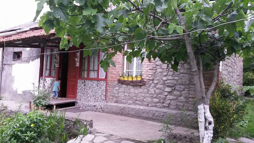 Old house Near the wood - Lagodekhi - Rumah