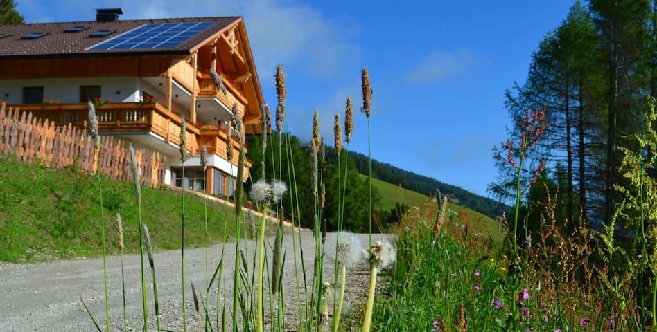 Wohnen am Oberpichlhof - Olang - Leilighet