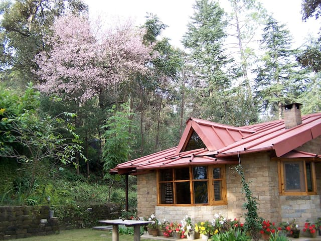 Snow View Cottages - Papar Saili - Bungalo