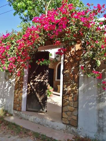 Aravali House - Rural Retreat in the Rose Gardens - Pushkar - Bungalow