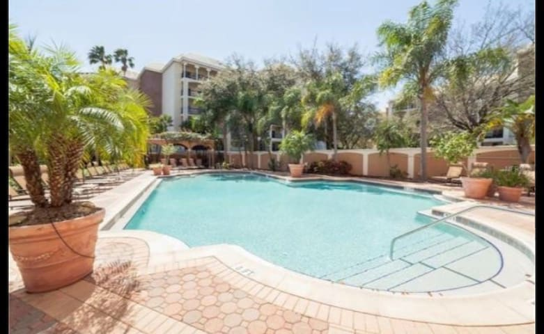 College Football Playoff Perfect Location! - Tampa - Apto. en complejo residencial