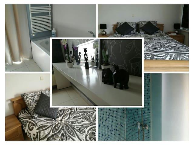 Room 10' from OostendAIRPORT, Bruges, + 10 beaches - Gistel - Leilighet