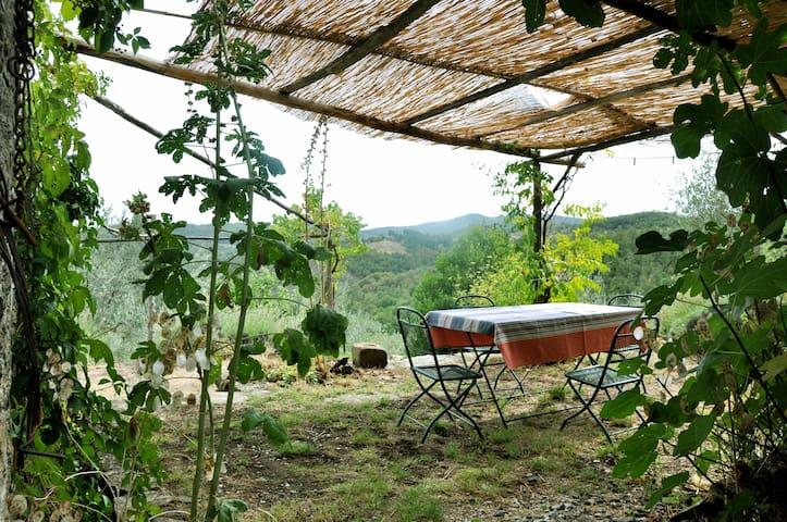 Nature's paradise with garden - Capolona - Lägenhet