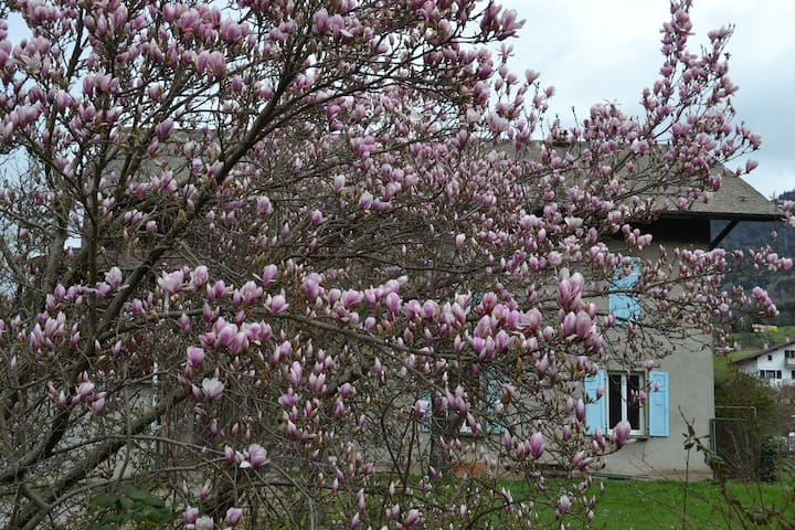 Gab's HouseVallée - Thyez - Huis