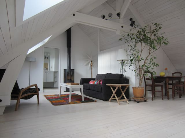 Charming loft-style studio, spacious, very bright. - Chartres - Appartement