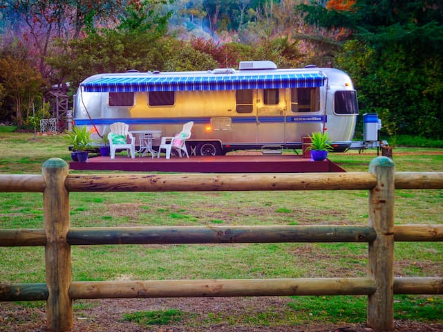 Airstream Caravan - unique! - Bright - Autocaravana