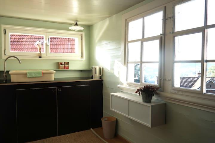 charming flat in a typical appenzeller-house - Trogen - Lyxvåning