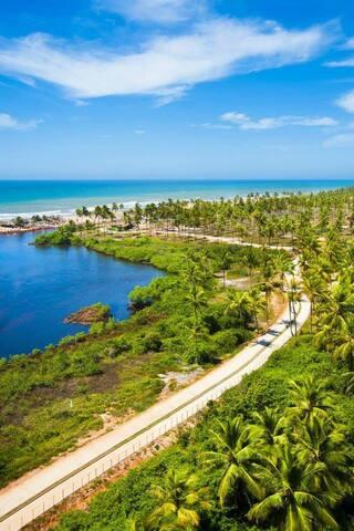 Spectacular tropical sea-view apartment in Bahia. - Mata de São João