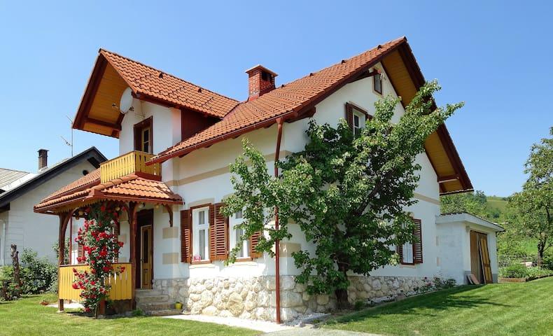 Bled holiday house - Spodnje Gorje - Hus