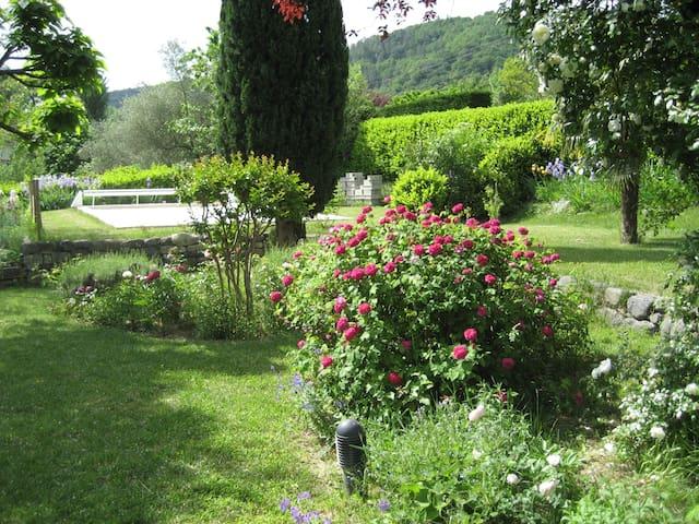 Les Oeillets - Alba-la-Romaine - Daire