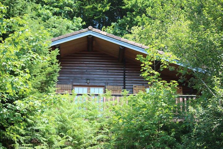 Chalet à Basse sur le Rupt (Vosges) - Basse-sur-le-Rupt - Chalet