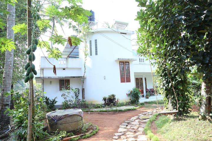 Thiruvalla - Thiruvalla - Wikt i opierunek