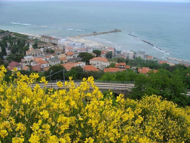 Confortevole appartamento sul mare - Marina di San Vito - Daire