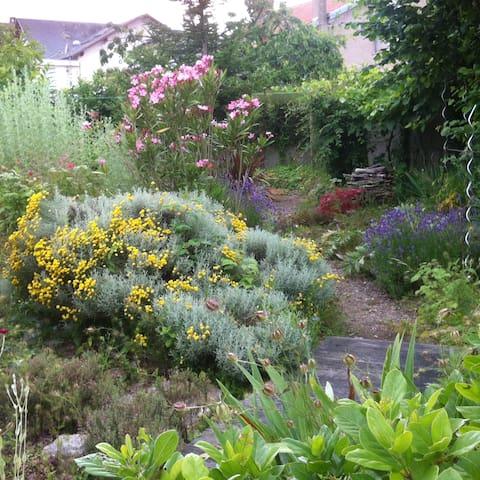 chambre chez l'habitant et son  beau jardin - La Roche-sur-Yon