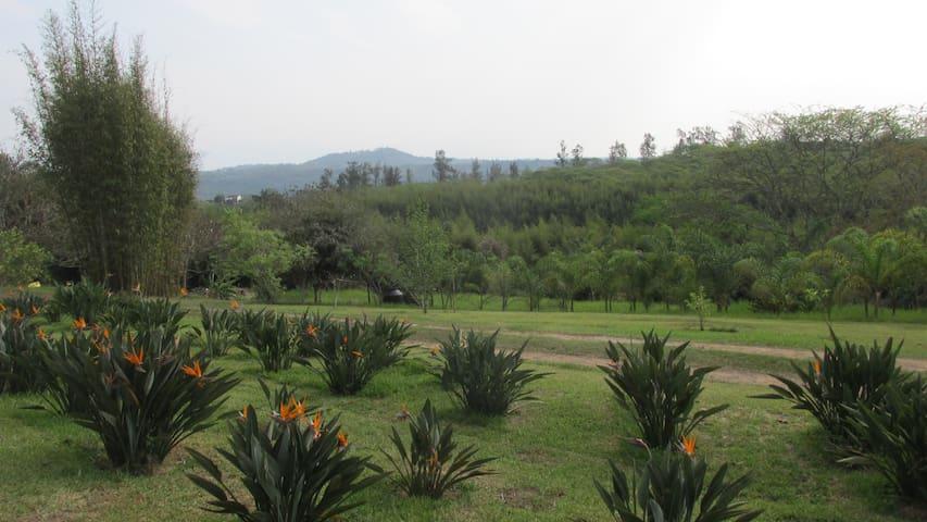 Casa de campo jardines, lago, bosque bambu, calma - Xalapa - Huis