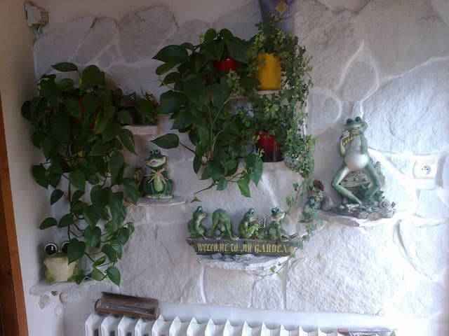 Mielno great place for holiday - Mielno