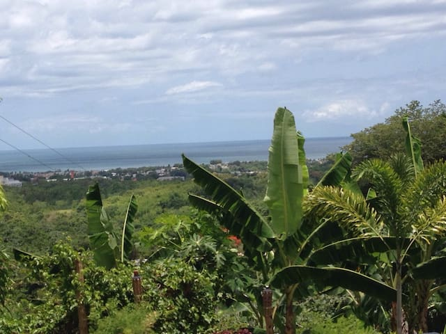 Ocean view studio in the mountains! - Mayagüez - Appartement