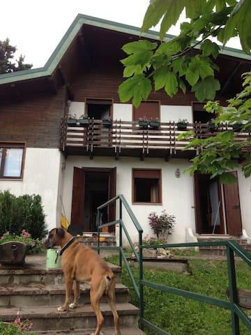Grazioso appartamento in bifamilare - Gallio - Apartamento