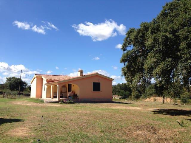 Bilocale vicino S.Teodoro - Ovilò