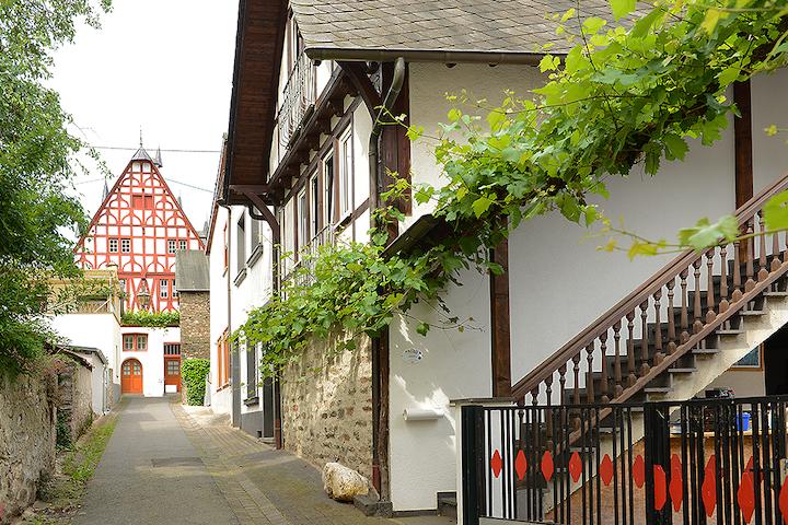 Domus Vini - Ferienhaus - Ellenz-Poltersdorf - Hus
