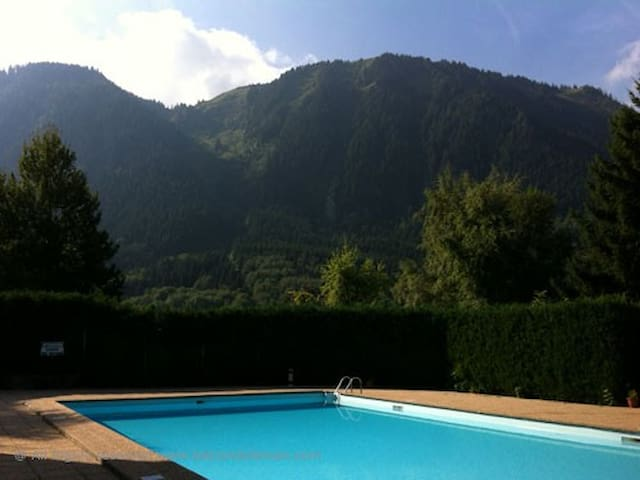 Comfortable apartment in mountains and near lake. - Thollon-les-Mémises - Daire