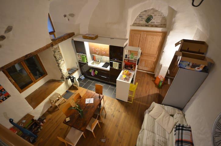 Tres beau/grand studio avec cachet - Veytaux - Departamento