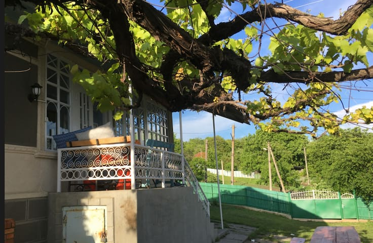 Donici Country House - Donici