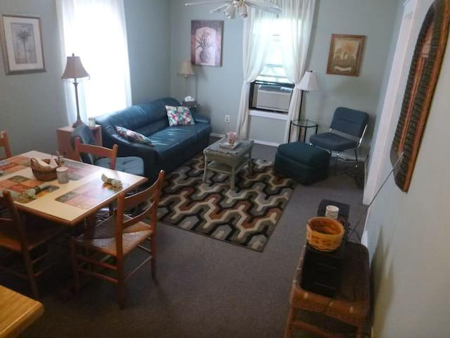 Private bedroom, shared kitchen,bath, laundry,WiFi - Rensselaer - Leilighet