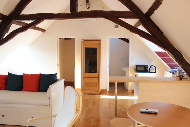 Charming studio in Montignac/Lascaux' town centre - Montignac - Departamento