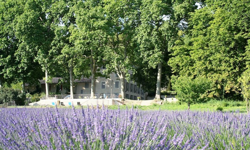 domaine de Vernede, Verdon - Puimoisson - Villa
