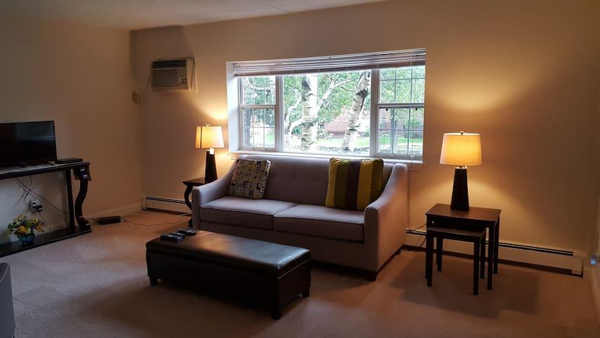 Quiet & comfortable near Boston and a Starbucks - Waltham - Apartament