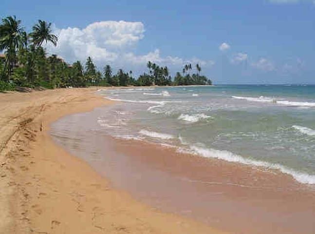 SPEC SEPT OCT,5Bed,3 Br,Beach Villa - Punta Santiago - 別荘