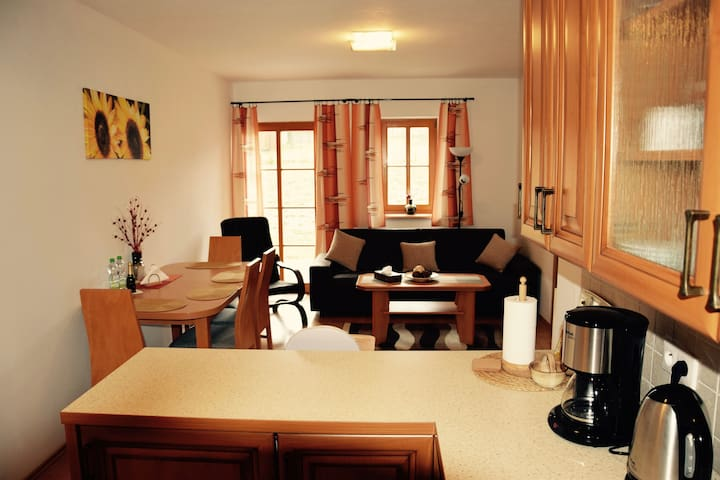 Family apartment with sunset terrace - Nová Pec - Lägenhet
