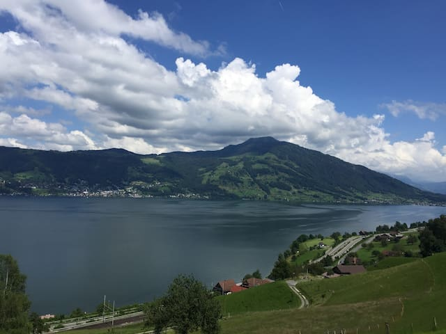 Charming Room with amazing view - Küssnacht - Leilighet