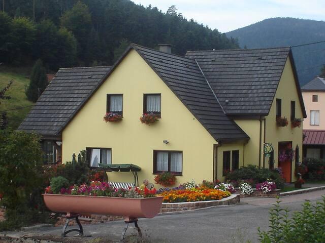 Au Bois Vert - Wangenbourg-Engenthal - Lägenhet