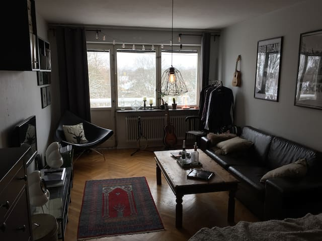Roomy 38 m2 apartment near downtown Lund - Лунд - Квартира