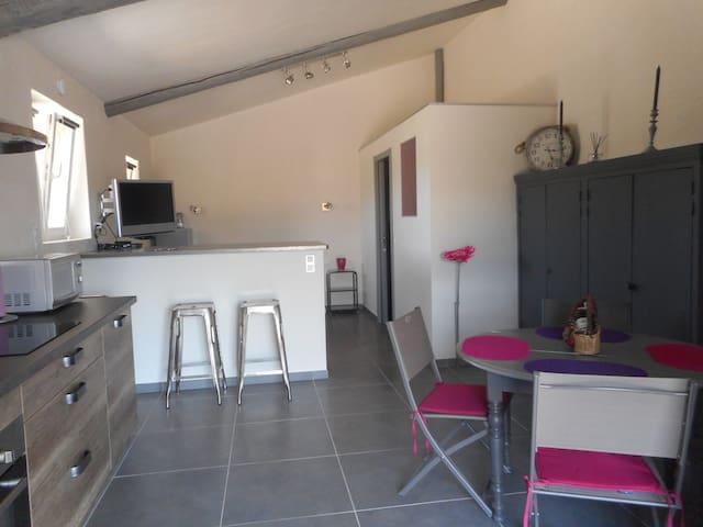 loft confort  au calme de la campagne proche sites - Cabrières-d'Avignon - Çatı Katı