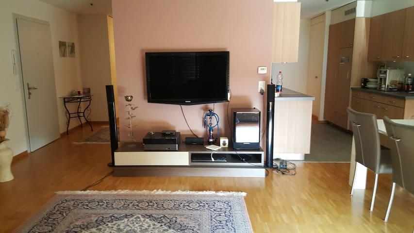 Home sweet home - Renens - Lägenhet