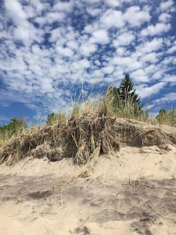 The Beach House - Tiny - Hytte
