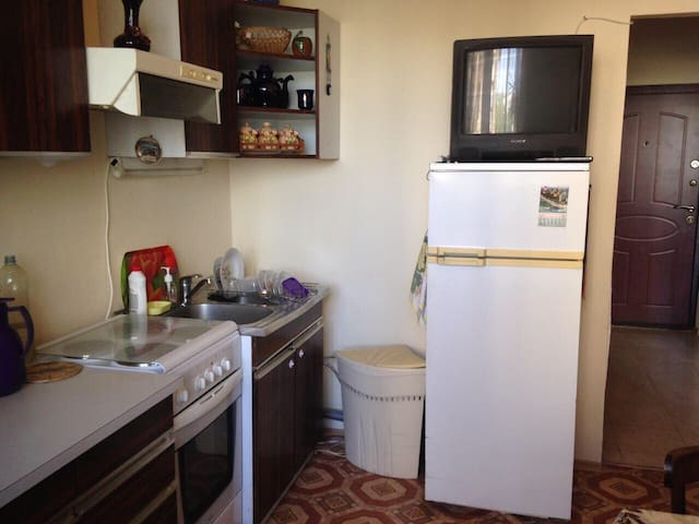 Уютная квартира в тихом районе - Novoye Devyatkino - Lägenhet