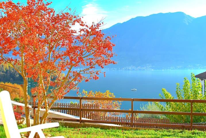 House Gloria Overview on Como Lake - Sala Comacina - House