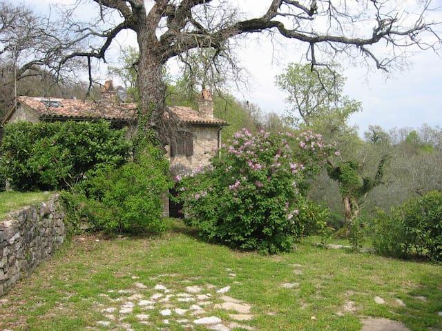 Countryside Stone Farmhouse - Camerata di Todi - Villa