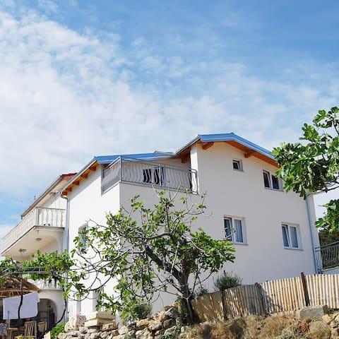 Villa Ester appartment in Lopar Rab - Lopar - Departamento