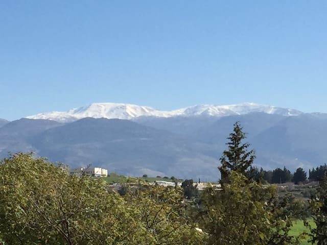Best Location for Northern Trips - Kiryat Shmona