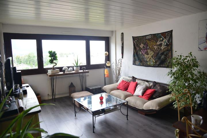 Bel appartement de 3 pièces aux portes de Genève - Gaillard - アパート