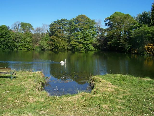 Swancrest Centre for Accomodation and Angling - Comber - Bed & Breakfast