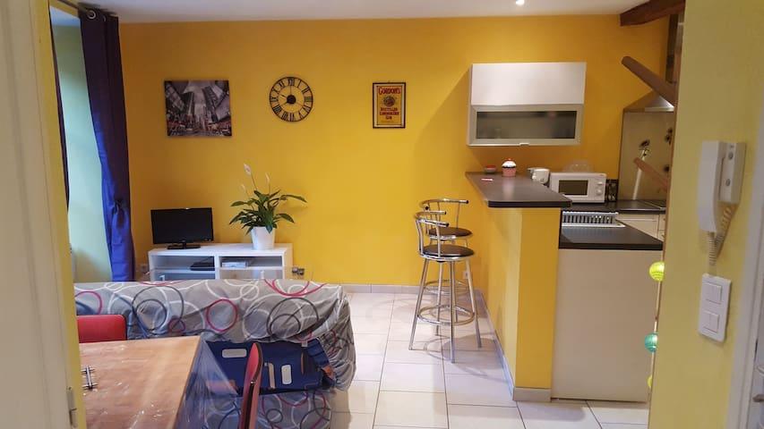 Appartement T3 en plein centre historique - Saint-Flour - Квартира