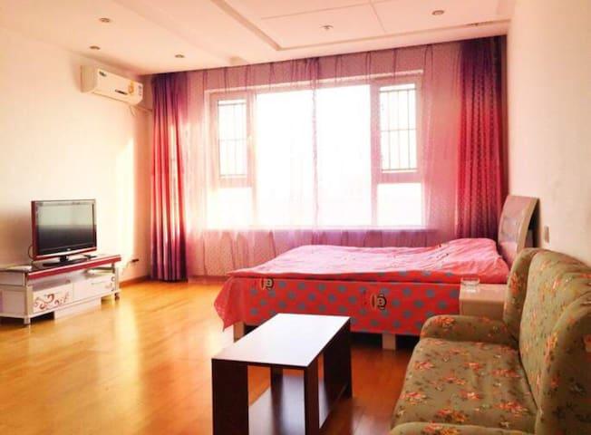 东方广场温馨一居室 - 长春 - 公寓