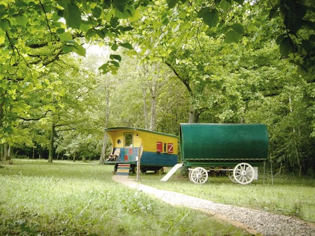 Gypsy trailers in the forest - Donzy - Overig