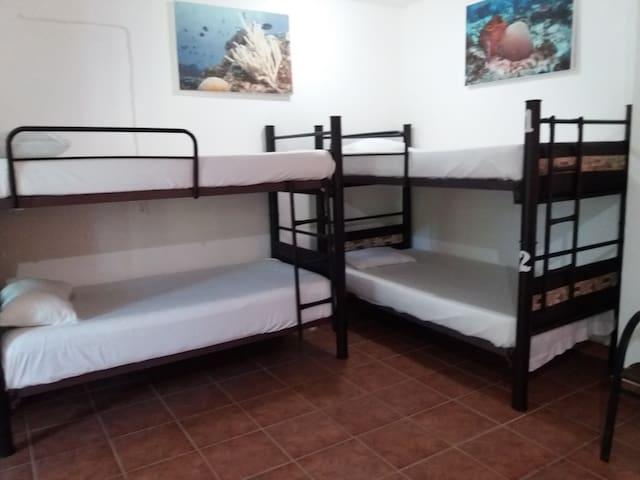 Loft 10 Hostel - Playa del Carmen